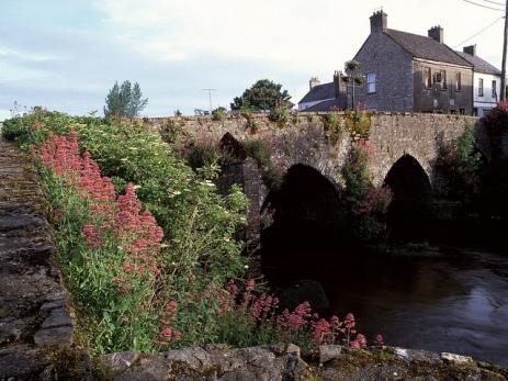 River Boyne, Co. Meath, Ireland by Rosario Flore -- CC