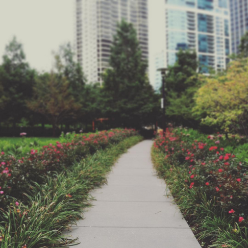 Chicago_Park
